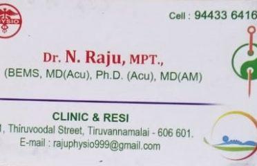 Dr.N.Raju, MPT.., ( BEMS, MD(Acu), Ph.D. (Acu), MD(AM) )